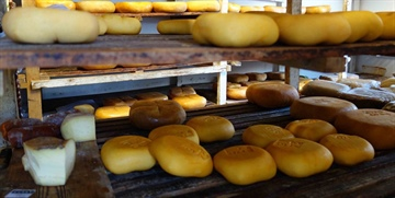 Menorca Cheese Museum